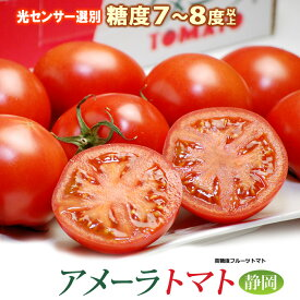 アメーラ(約900g)静岡産 高糖度フルーツトマト とまと 食品 野菜 きのこ トマト 送料無料