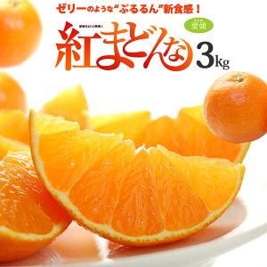 紅まどんな 2/3L(約3kg)愛媛産 秀品 贈答用 みかん ミカン 蜜柑 食品 フルーツ 果物 みかん 送料無料 お歳暮 御歳暮 ギフト