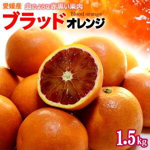 ブラッドオレンジ(L-2L/約1.5kg)愛媛産 秀品 タロッコ 食品 フルーツ 果物 オレンジ ブラッドオレンジ タロッコオレンジ 甘い 高糖度 国産 送料無料
