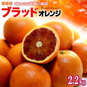 ブラッドオレンジ(L-2L/約2.2kg)愛媛産 秀品 タロッコ 食品 フルーツ 果物 オレンジ ブラッドオレンジ タロッコオレンジ 国産 送料無料