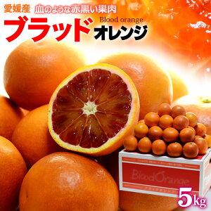 ブラッドオレンジ(L-2L/約5kg)愛媛産 秀品 タロッコ 食品 フルーツ 果物 オレンジ 国産 ブラッドオレンジ タロッコオレンジ 送料無料