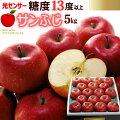 サンふじリンゴ糖度13度以上5kg