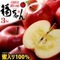 蜜入り100%福ちゃんりんご3kg