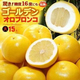 ゴールデンオロブロンコ 大(15玉/約6.6kg)カリフォルニア産 食品 フルーツ 果物 グレープフルーツ 高糖度 大玉 甘い 送料無料