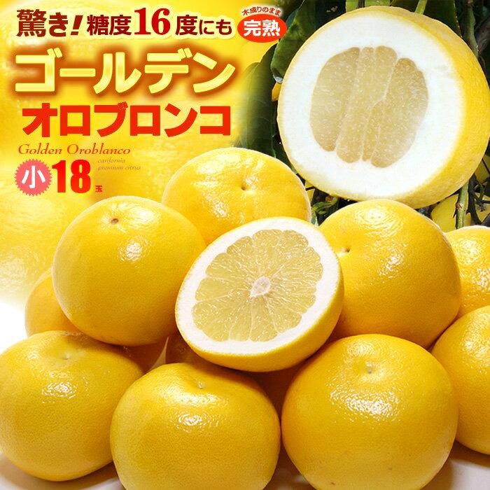 ゴールデンオロブロンコ Mサイズ小玉(18玉)カリフォルニア産 グレープフルーツ オロブロンコ スウィーティー 高糖度 食品 フルーツ 果物 グレープフルーツ 送料無料