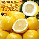 ゴールデンオロブロンコ 大(27玉/約12kg)カリフォルニア産 食品 フルーツ 果物 グレープフルーツ 高糖度 大玉 甘い 送料無料