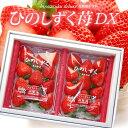 ひのしずくDX(約300g×2P)熊本産 贈答用 ギフト いちご 苺 イチゴ デラックス 大粒 大玉 高糖度 甘い 高級いちご 食品…
