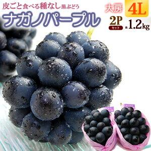 ナガノパープル4L×2房(約1.2kg)長野産 秀品 種無し 皮ごと ぶどう 食品 フルーツ 果物 ブドウ ギフト 送料無料