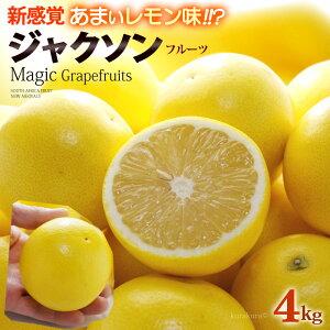 マジックグレープフルーツ ジャクソンフルーツ(18玉前後/約4kg)南アフリカ産 新種 グレープフルーツ 食品 フルーツ 果物 グレープフルーツ 送料無料
