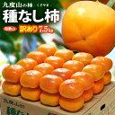 訳あり 種なし柿(約7.5kg)和歌山県九度山産 ご家庭用 ワケアリ 食品 フルーツ 果物 柿 送料無料
