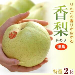 香梨(大玉2玉)徳島産 特大4-5Lサイズ 秀品 ギフト かおり 青梨の最大級品種 食品 フルーツ 果物 和梨 幸水 送料無料