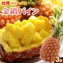金鑚パイン(3玉/約4kg)台湾産 パイナップル きんさんパイン 日本向け完熟栽培 食品 フルーツ 果物 パイナップル 送料…