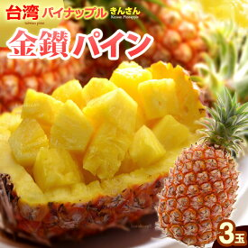 金鑚パイン(3玉/約4kg)台湾産 パイナップル きんさんパイン 日本向け完熟栽培 高糖度 甘い 食品 フルーツ 果物 パイナップル 送料無料