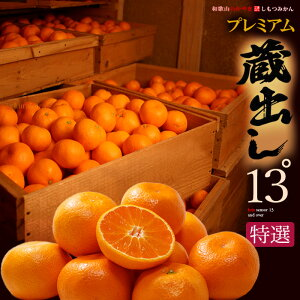 糖度13度以上 蔵出しみかん プレミアム13℃ S-L(約5kg)和歌山県下津産 特選 贈答用 ギフト 蔵出し 本貯蔵 甘い 高糖度 高級 しもつ 光センサー ミカン 蜜柑 食品 フルーツ 果物 みかん 送料無料