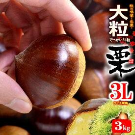 栗3L(約3kg)茨城・熊本・愛媛産 大粒 和栗 くり クリ 食品 フルーツ 果物 栗 送料無料