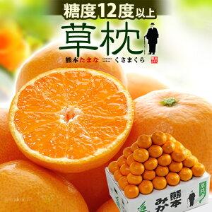 天水みかん 草枕 赤-青秀 S-M(約5kg)熊本産 くさまくら 夏目漱石 糖度12度以上 贈答用 お歳暮 蜜柑 食品 フルーツ 果物 みかん 送料無料