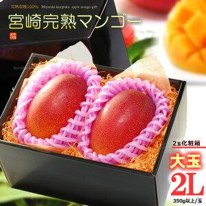 宮崎マンゴー(2L×2玉/約700g)宮崎産 秀品 ギフト 贈答 国産 完熟 マンゴー 高糖度 甘い 食品 フルーツ 果物 マンゴー 送料無料
