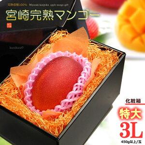 宮崎マンゴー(3L/約450g)宮崎産 秀品 ギフト 贈答 国産 完熟 マンゴー 高糖度 高級 甘い 食品 フルーツ 果物 マンゴー 送料無料