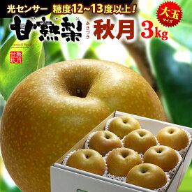 甘熟梨 あきづき 秋月梨(約3kg)産地お任せ 秀品 ギフト 大玉 糖度12度以上 食品 フルーツ 果物 和梨 送料無料