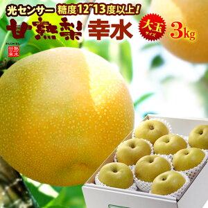 甘熟幸水梨3L-5L(約3kg)産地はお任せ 糖度12度以上の大玉幸水梨だけをお届け 食品 フルーツ 果物 和梨 幸水 送料無料