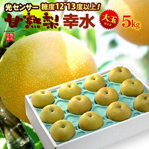 甘熟幸水梨3L-5L(5kg)産地はお任せ 糖度12度以上の大玉幸水梨だけをお届け 食品 フルーツ 果物 和梨 幸水 送料無料