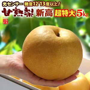甘熟新高梨7L(約5kg)産地はお任せ 秀品 糖度12度以上の超特大新高梨 食品 フルーツ 果物 和梨 新高 送料無料