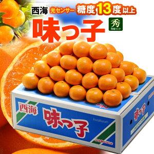 西海みかん 味っ子みかん(5kg)長崎産 秀品 贈答用 糖度13度以上 みかん ミカン 蜜柑 食品 フルーツ 果物 みかん 送料無料