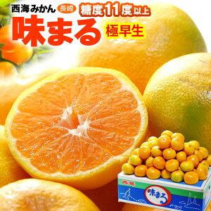 西海みかん 極早生味まる(5kg)長崎産 秀 糖度選果11度以上 ミカン 蜜柑 食品 フルーツ 果物 みかん 送料無料
