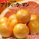 グレープフルーツ プリティーウーマン(11玉前後/約4.5kg)アメリカ産 ピンク ルビー 赤肉 レイルビー種 フロリダ 大玉 …