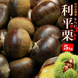 利平栗 2L(5.3kg)熊本/愛媛/茨城産 和栗 生栗 食品 フルーツ 果物 栗 利平 送料無料