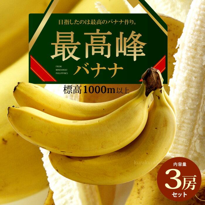 最高峰バナナ(約700g×3袋)フィリピン産 バナナ 高糖度 甘い ばなな 標高1000m以上の高地栽培 食品 フルーツ 果物 バナナ 送料無料