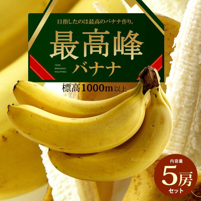 最高峰バナナ(約700g×5袋)フィリピン産 バナナ 高糖度 甘い ばなな 標高1000m以上の高地栽培 食品 フルーツ 果物 バナナ 送料無料