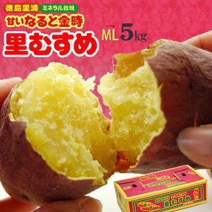 なると金時 里むすめ(M-L/5kg)徳島里浦産 ミネラル栽培 鳴門金時 里娘 さとむすめ ホクホク 焼き芋 焼いも サツマイモ 薩摩芋 さつま芋 食品 野菜 きのこ サツマイモ 送料無料