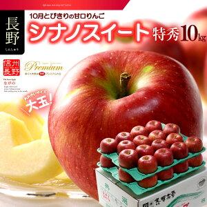 シナノスイート(約10kg)長野産 特秀 ギフト 大玉 りんご リンゴ 林檎 食品 フルーツ 果物 りんご 送料無料