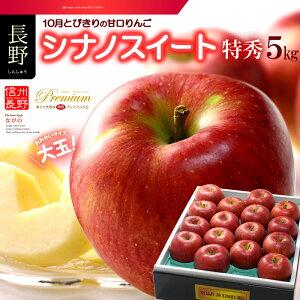 シナノスイート(約5kg)長野産 特秀 ギフト 大玉 りんご リンゴ 林檎 食品 フルーツ 果物 りんご 送料無料