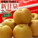 新甘泉梨(約2kg)鳥取産 新品種の赤梨 しんかんせん 糖度13度以上 高糖度 和梨 食品 フルーツ 果物 和梨 送料無料