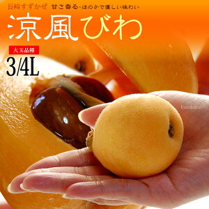 涼風びわ(3-4L/約1kg)長崎産 秀品 ギフト 贈答用 ビワ 枇杷 ハウス栽培 食品 フルーツ 果物 びわ 涼風(すずかぜ) 送料無料