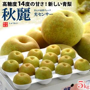 秋麗梨(12-14玉前後/約5kg)熊本産 青梨の新品種 高糖度和梨 食品 フルーツ 果物 和梨 送料無料