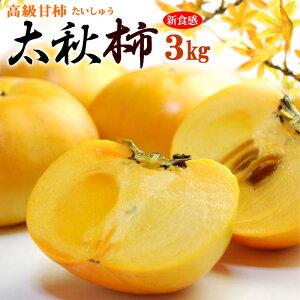 太秋柿(約3kg)熊本・愛媛・福岡産 秀品 たいしゅうがき 高級甘柿 食品 フルーツ 果物 柿 送料無料