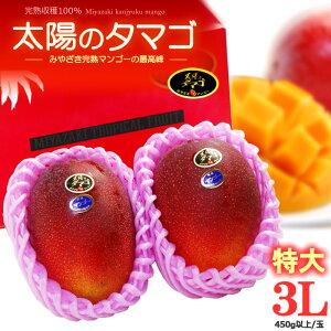 太陽のタマゴ(3L×2玉/約1kg)宮崎産 秀品 太陽のたまご ギフト 贈答 国産 完熟 マンゴー 高糖度 甘い 高級 食品 フルーツ 果物 マンゴー 送料無料