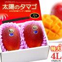 太陽のタマゴ(4L×2玉/約1.2kg)宮崎産 秀品 ギフト 贈答 国産 完熟 マンゴー 食品 フルーツ 果物 マンゴー 送料無料