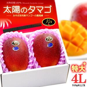太陽のタマゴ(4L×2玉/約1.2kg)宮崎産 秀品 太陽のたまご ギフト 贈答 国産 完熟 マンゴー 高糖度 甘い 高級 食品 フルーツ 果物 マンゴー 送料無料