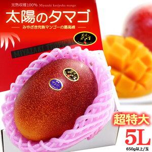 太陽のタマゴ(5L/約650g)宮崎産 秀品 太陽のたまご ギフト 贈答 国産 完熟 マンゴー 高糖度 甘い 高級 食品 フルーツ 果物 マンゴー 送料無料