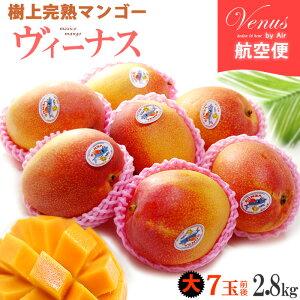 ヴィーナスマンゴー(7玉前後/約2.8kg)メキシコ産 ギフト 贈答 メキシコマンゴー 高糖度 甘い 高級 食品 フルーツ 果物 マンゴー 送料無料
