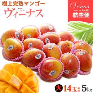 ヴィーナスマンゴー(12-14玉前後/約5kg)メキシコ産 ギフト 贈答 メキシコマンゴー 高糖度 甘い 高級 食品 フルーツ 果物 マンゴー 送料無料
