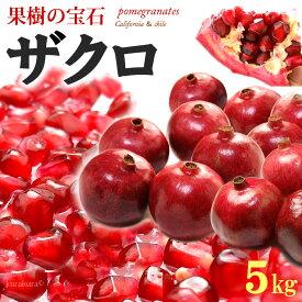 ザクロ(12-15玉前後/約5kg)アメリカ産 ざくろ 石榴 柘榴 ザクロジュース 送料無料