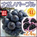 ナガノパープル4L×4房(約2.4kg)長野産 皮ごと種無しの黒ぶどう 送料無料