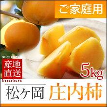 訳あり庄内柿 M/L(約5kg)山形産 種なし柿 産地直送 送料無料