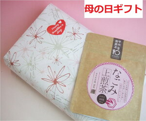 【母の日ギフト】桔梗信玄餅10個入りとなごみ上煎茶(甲州南部茶)