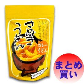讃岐うどんスナック・カレー味 (45g×10袋)うどん スナック お菓子 菓子 カレー風味 カレー 松浦唐立軒
